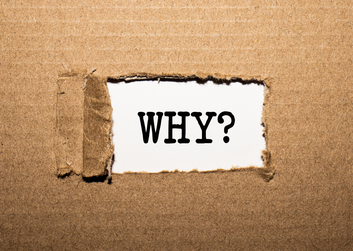 My Purpose, My Why, and Why Write This Blog? life by design theprofitrecipe.com